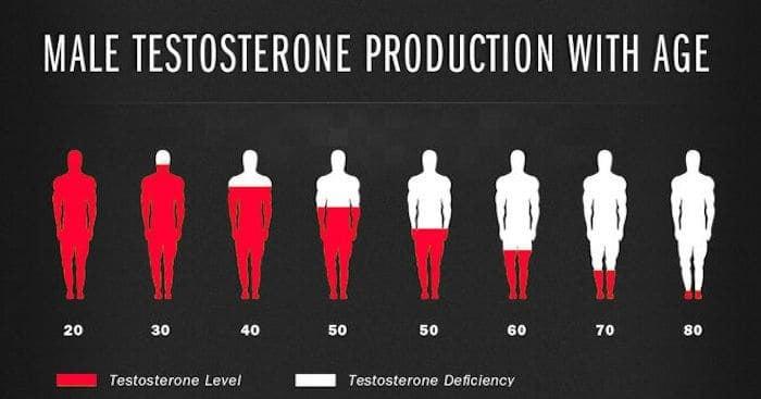 testosteron productie bij mannen - Paul Folmer